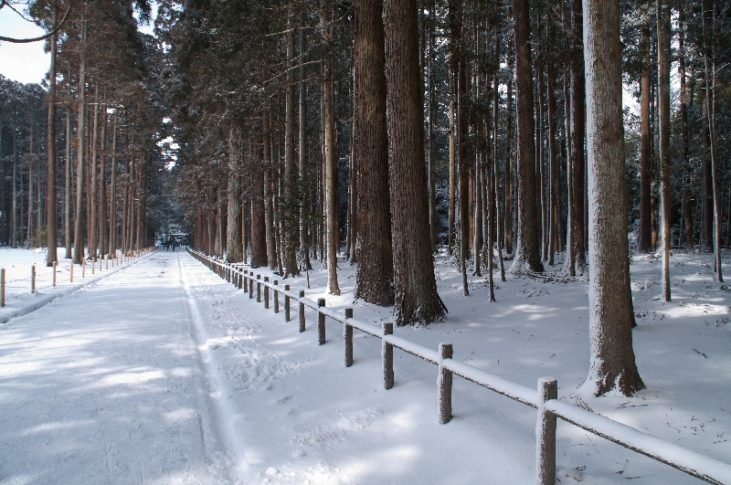 瑞巌寺の歩道